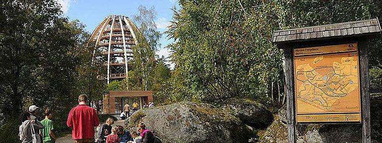 Bayerischer Wald - Baumwipfelpfad