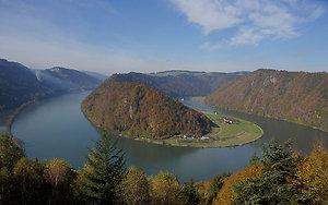 Donauschlinge in Bayern