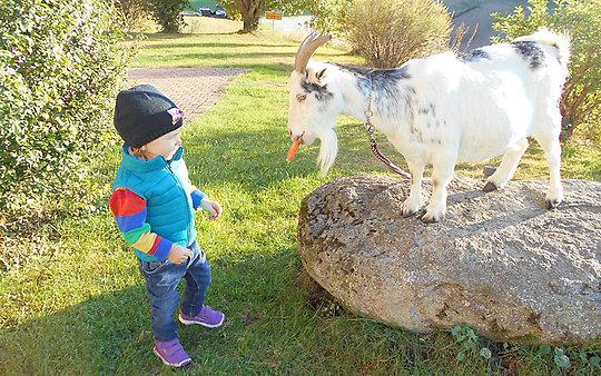 Bauernhof mit Kinder und Tiere in Bayern